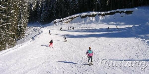 Гірськолижний відпочинок: зимовий спорт, розвги та оздоровлення