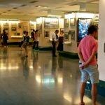 Знайомство з історією і культурою В'єтнаму в музеях Хошиміну [draft]